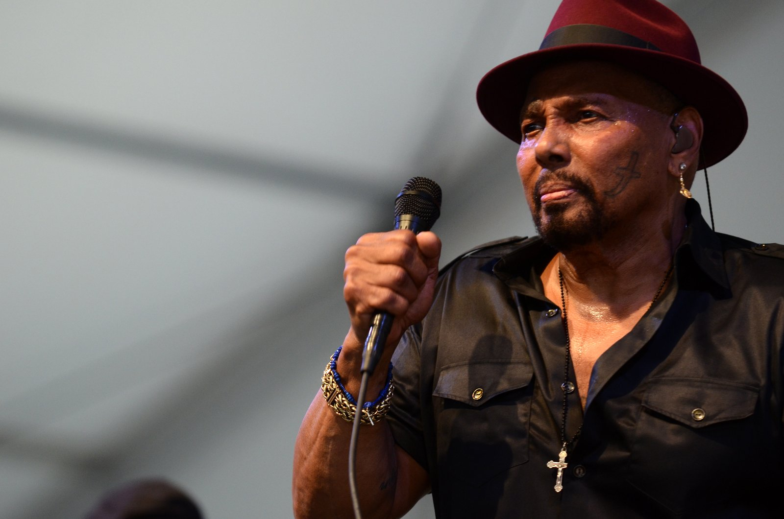 Hire Aaron Neville for Events