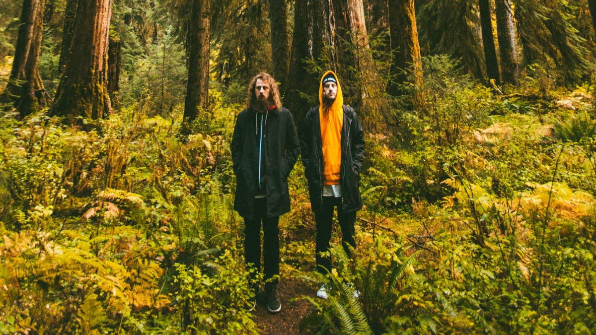 hippie-sabotage-forest.jpg