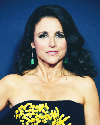 19-Julia-Louis-Dreyfus-red-carpet-1.w330.h412.jpg
