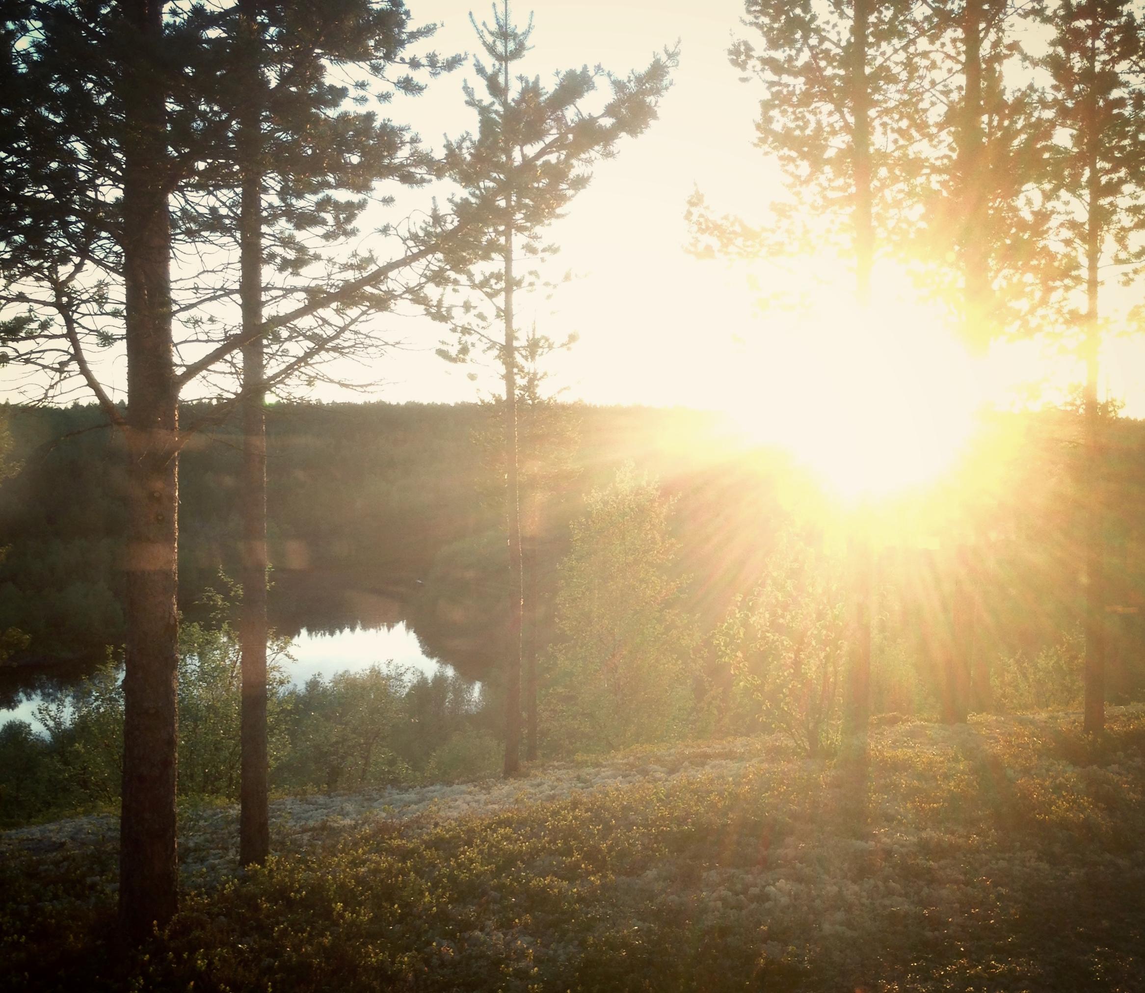 The Midnight Sun Shines in June. Photo: SoundByNature@