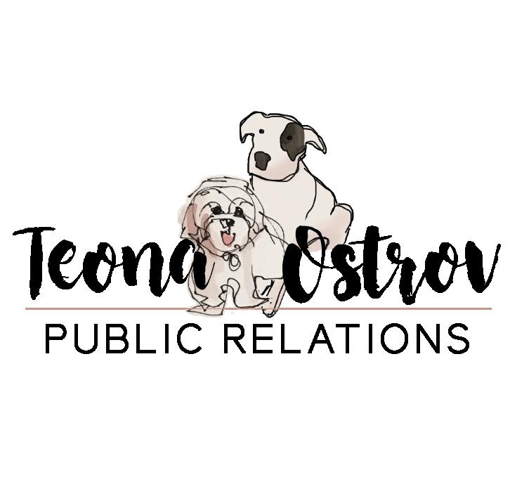 teonaostrov-logo-final-02.png