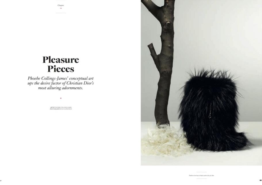 pleasure_pieces.jpg