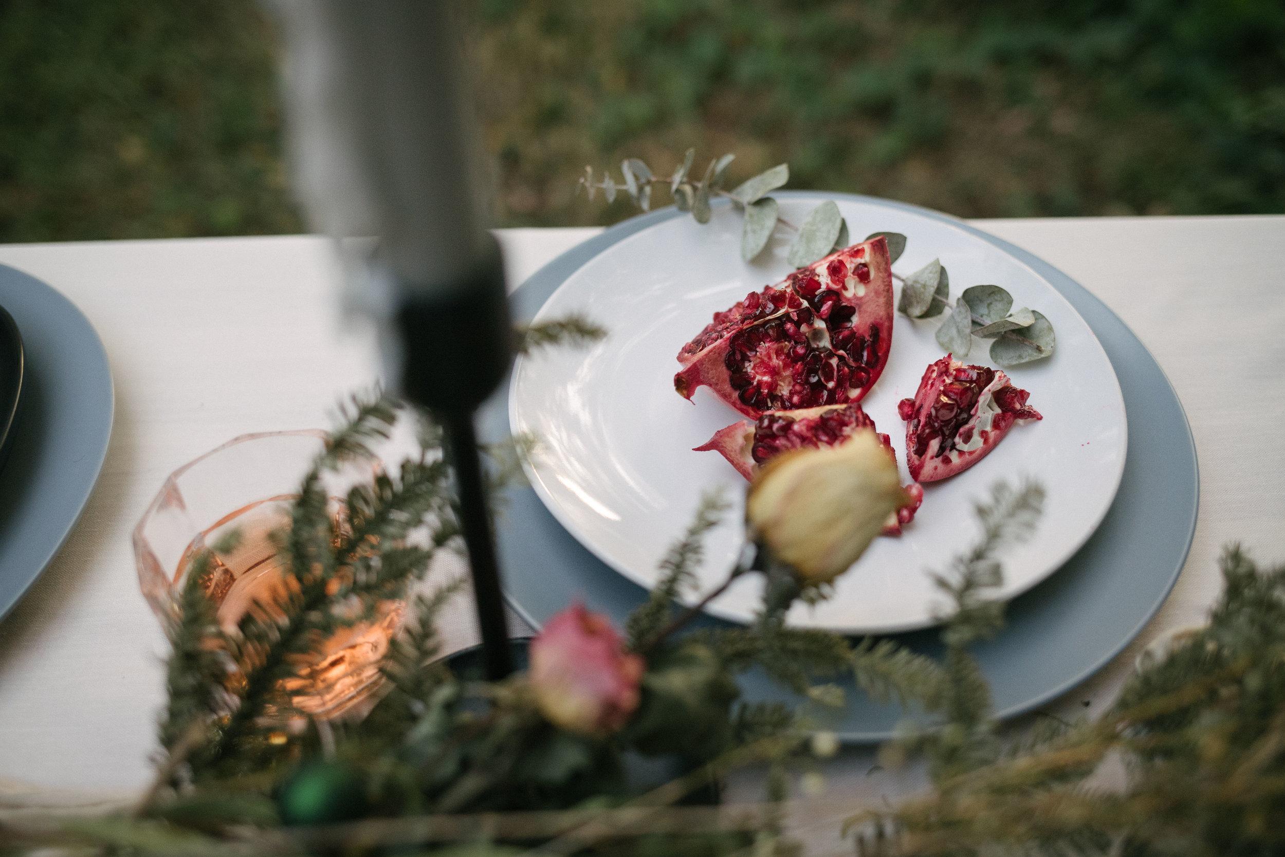 Dawn Konofaos - Vegan Holiday Cookbook Look-Book-0620.jpg