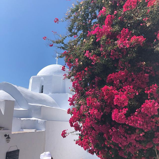 Beauty around every corner! I appreciate my senses and feel grateful for this gift. #amorgos #yogaretreat #greece #happy #space #createsomething #believe