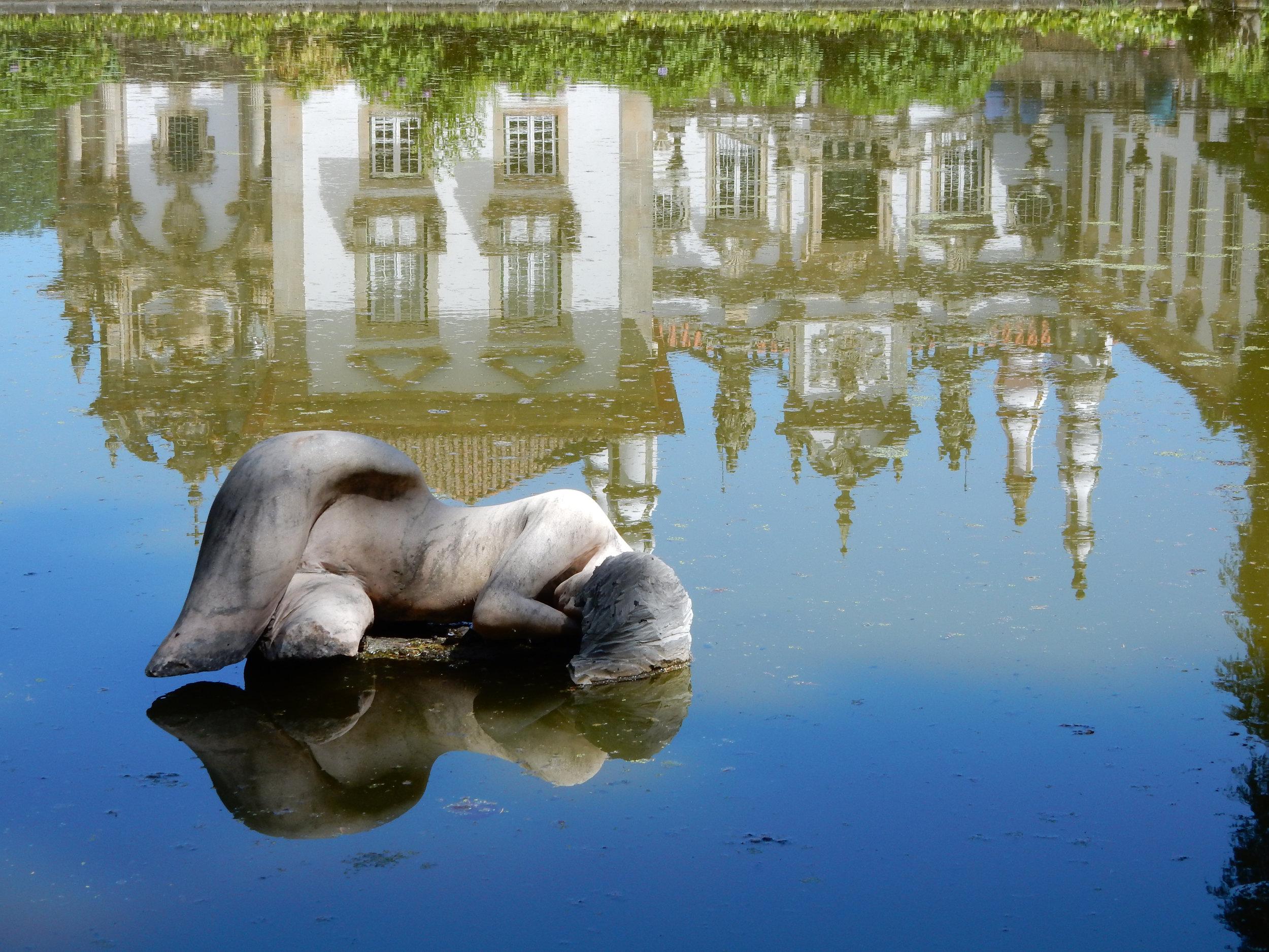 Mateus Reflection.jpg