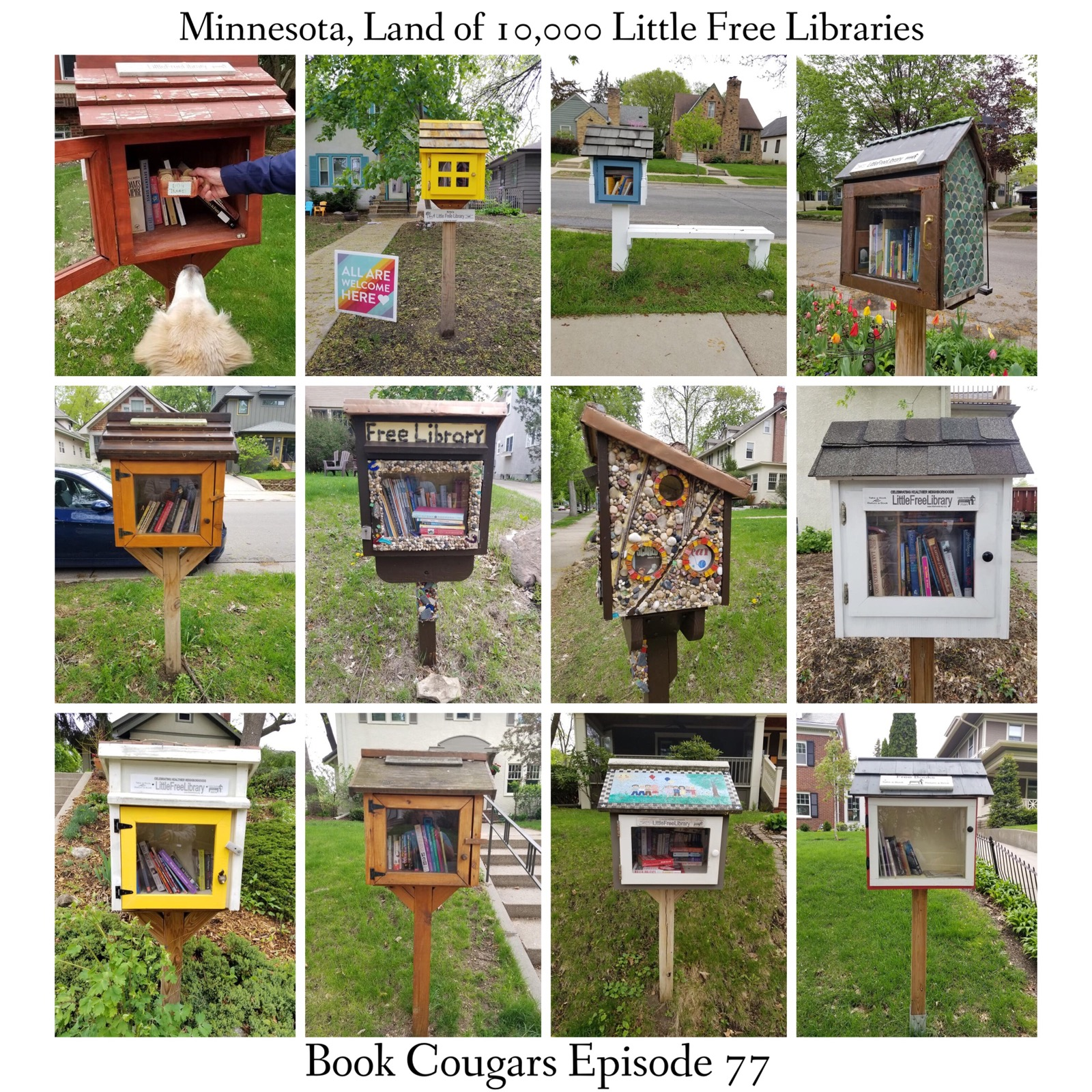 A sampling of the Little Free Libraries (LFL) that Emily spied on her trip to Minnesota. For map of LFL's, click  here .