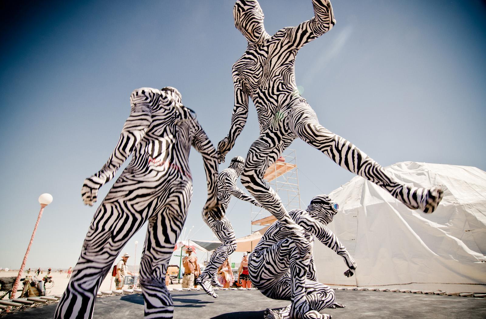 zebra men.jpg
