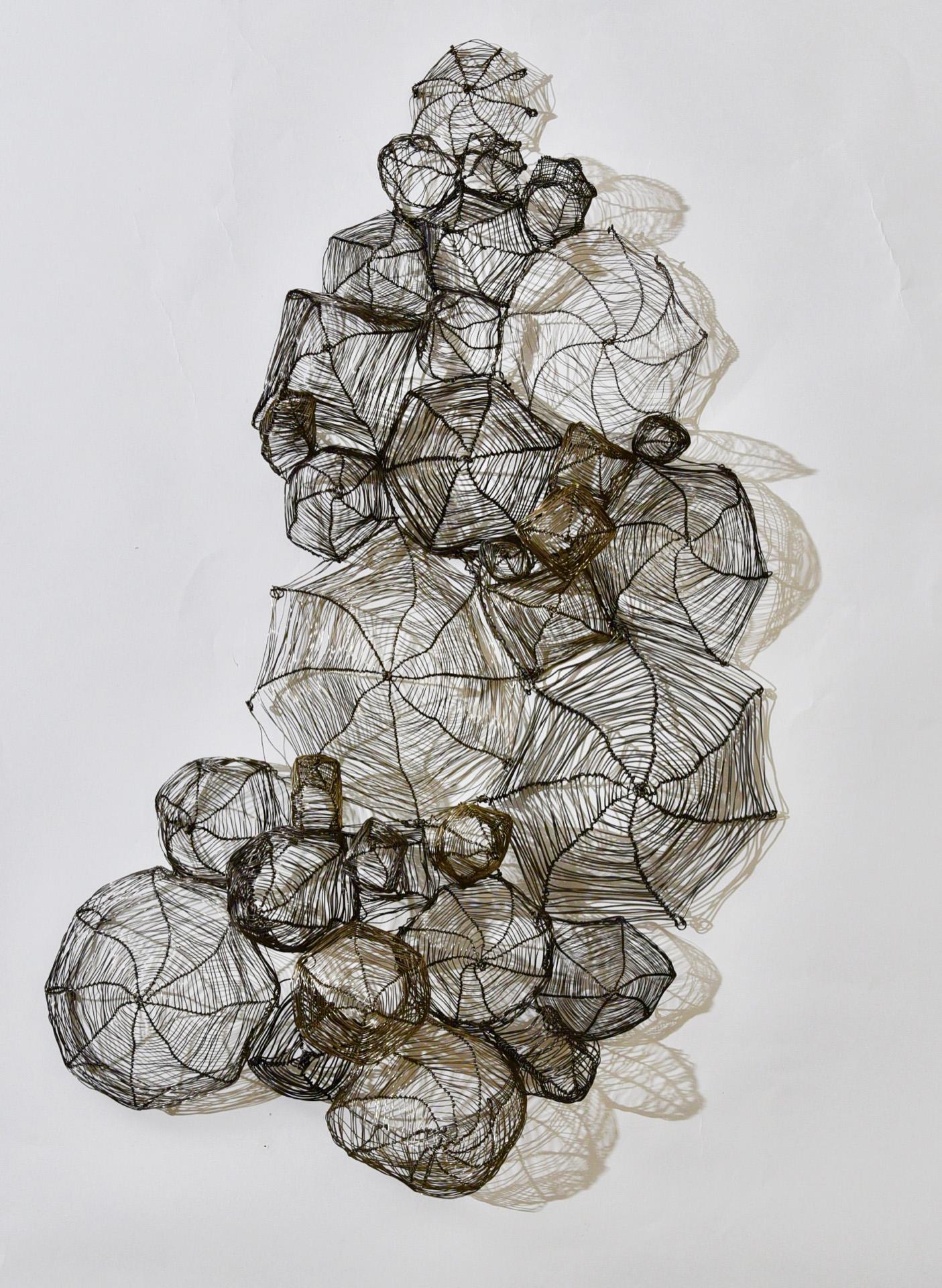 'nesting' 31 x 19 x 5, Wire, 2019