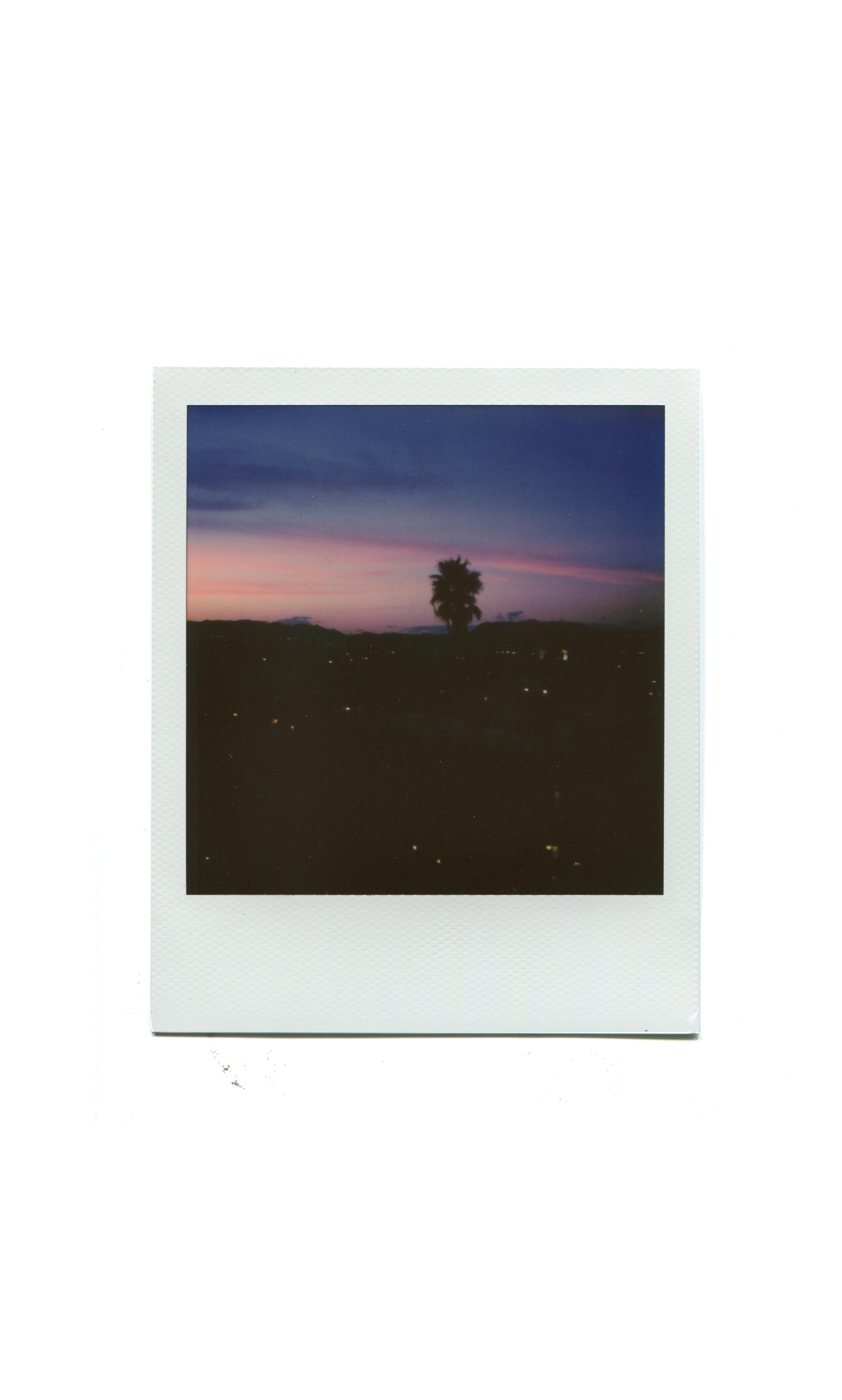 polaroid_la007.jpg
