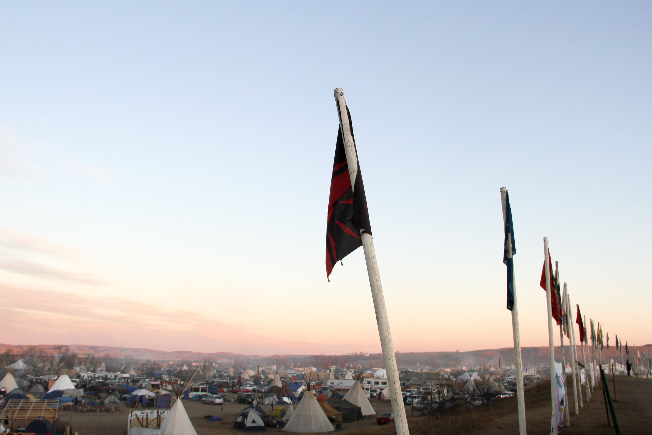 Flags from many tribes line the entrance of Oceti Sakowin Camp. Photo by Tania Ellersick
