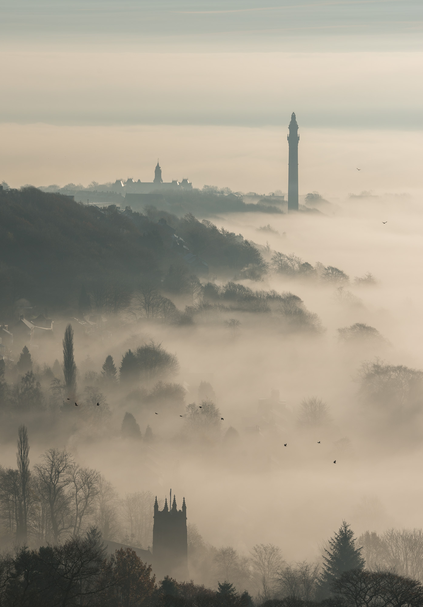 Wainhouse Tower with Halifax and mist and birds