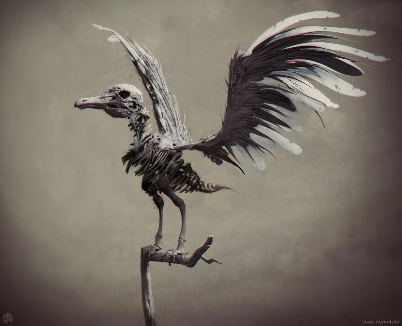 ASC_Pirates5_Birds_v7_11-14-14.jpg
