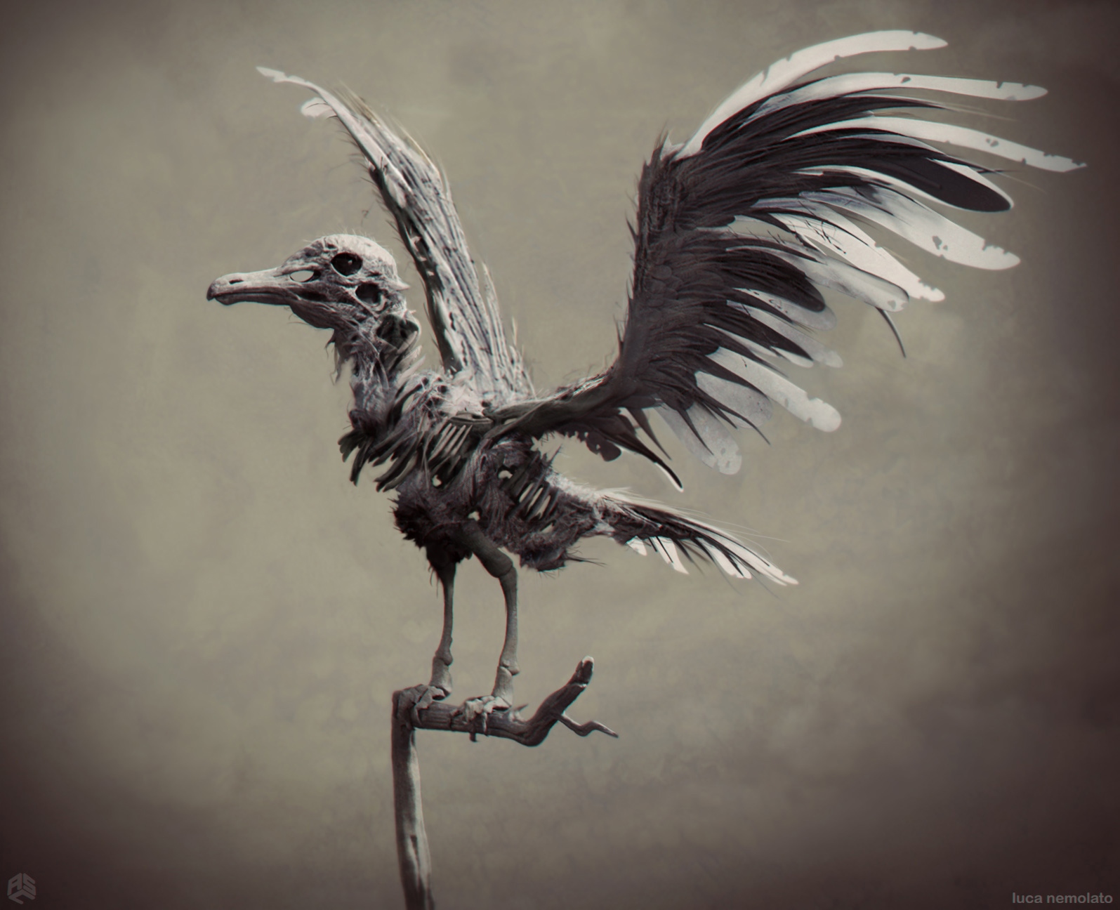 ASC_Pirates5_Birds_v9_11-14-14.jpg