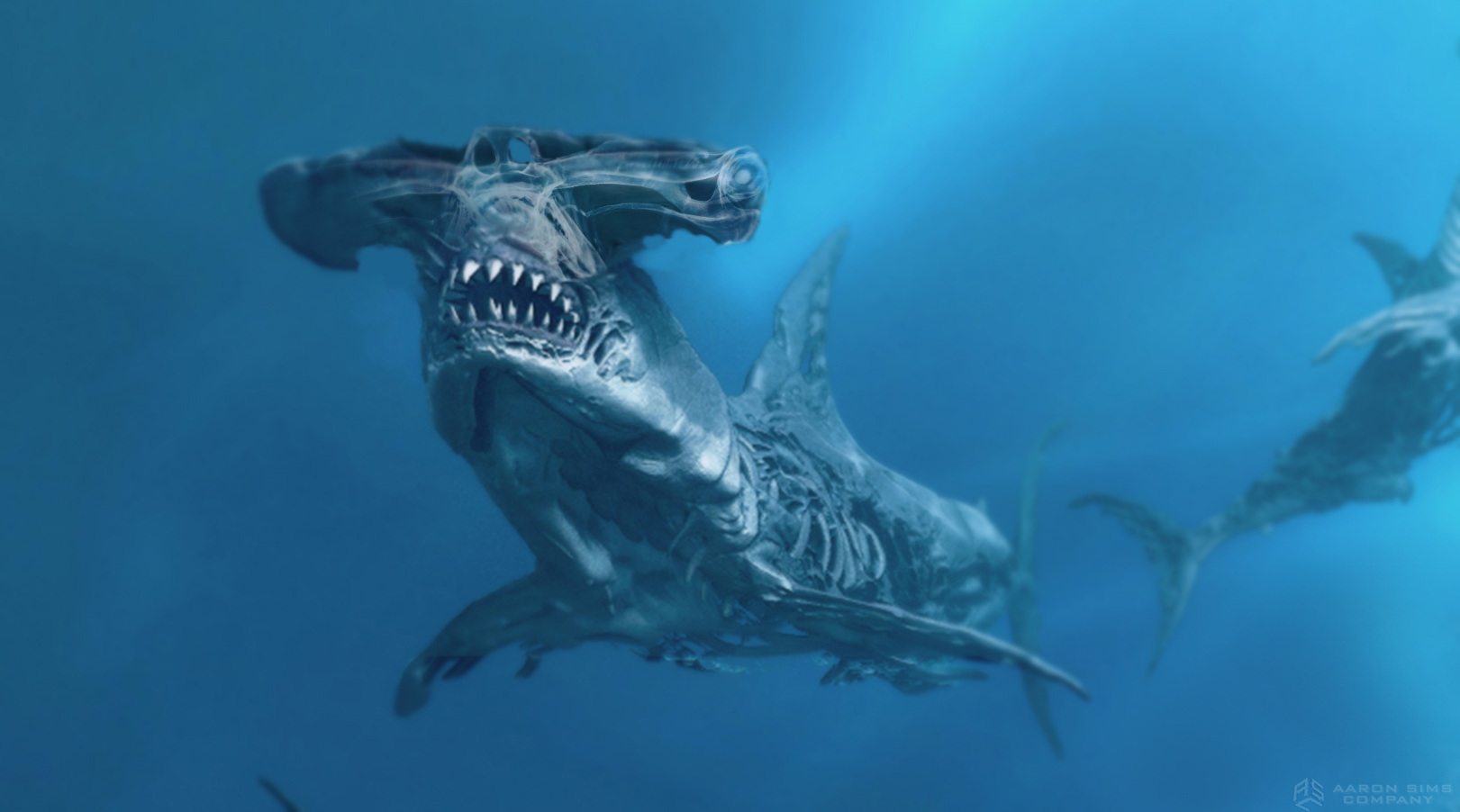 ASC_Pirates5_Sharks_v9_11-14-14.jpg