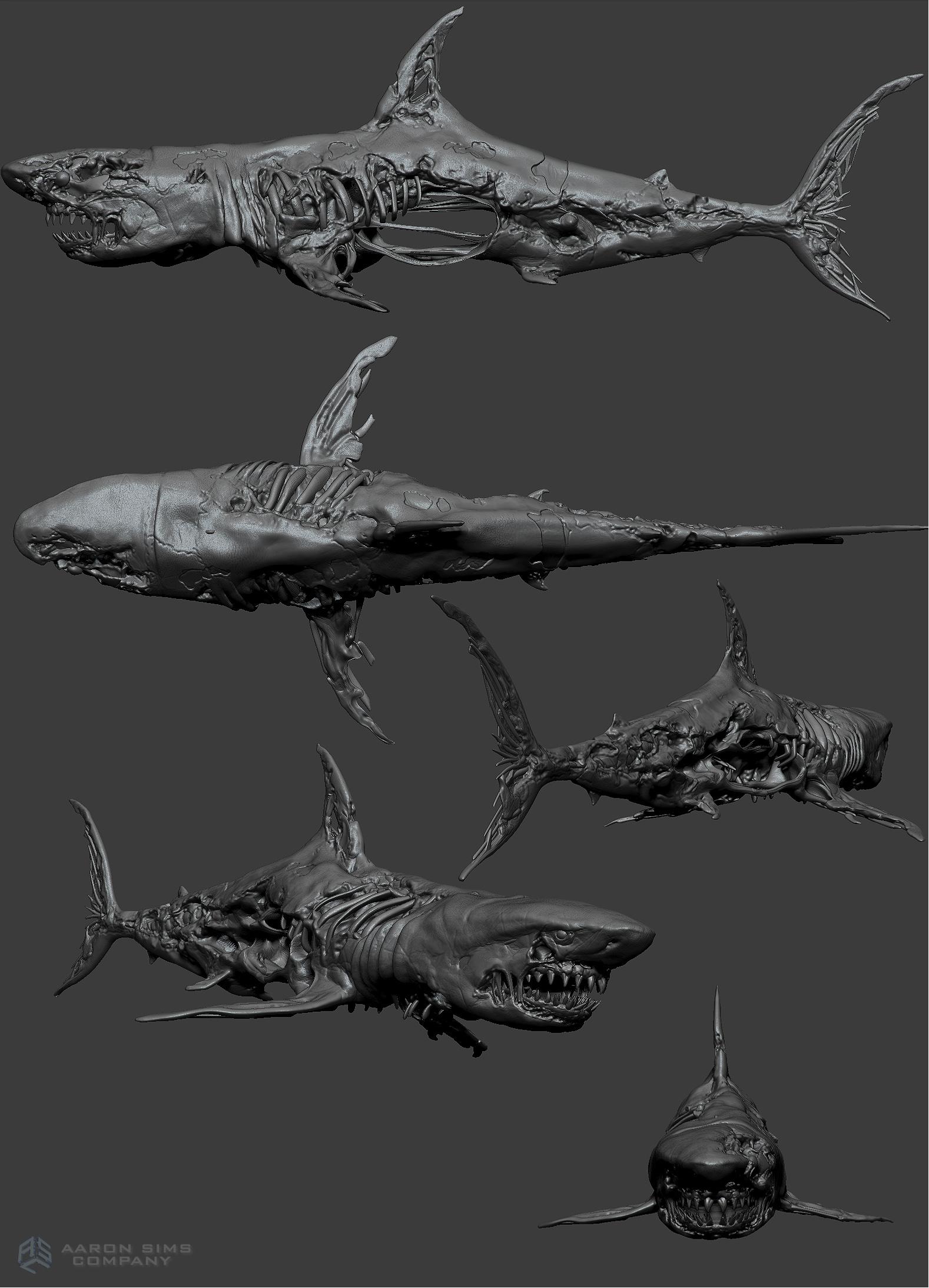 ASC_Pirates5_Sharks_v10_11-14-14.jpg