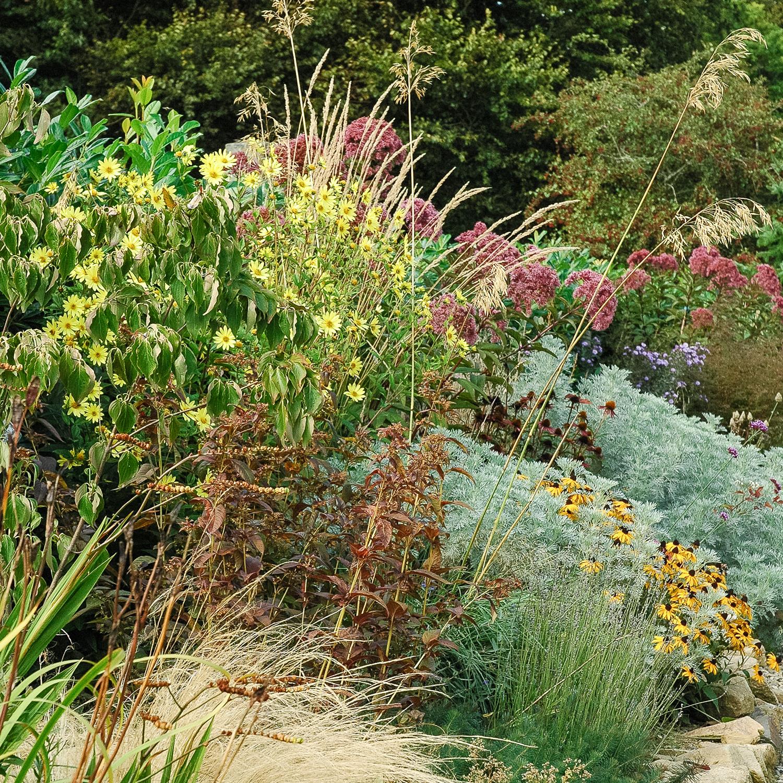 gîte-bijzonderplekje-tuin-geavisserphotography.jpg