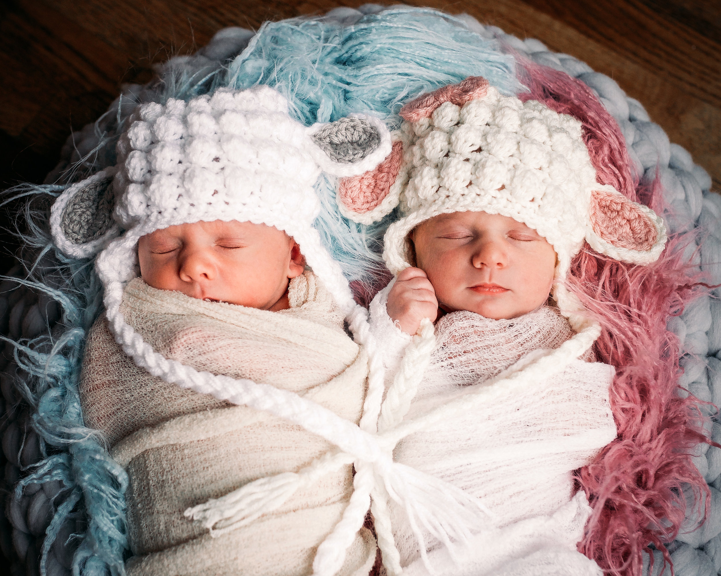 milton newborn photographer