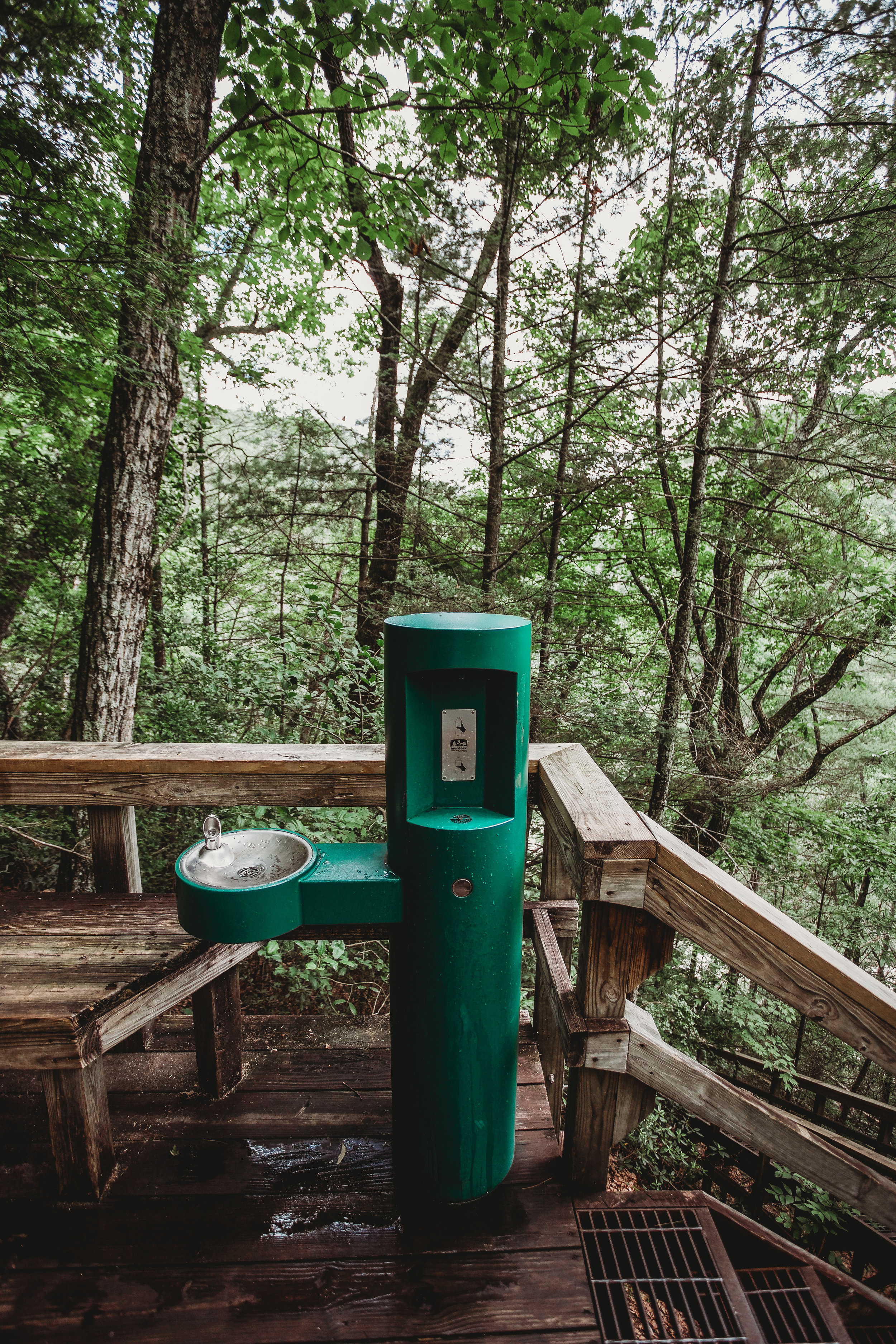 Water fountain and bottle fill up station