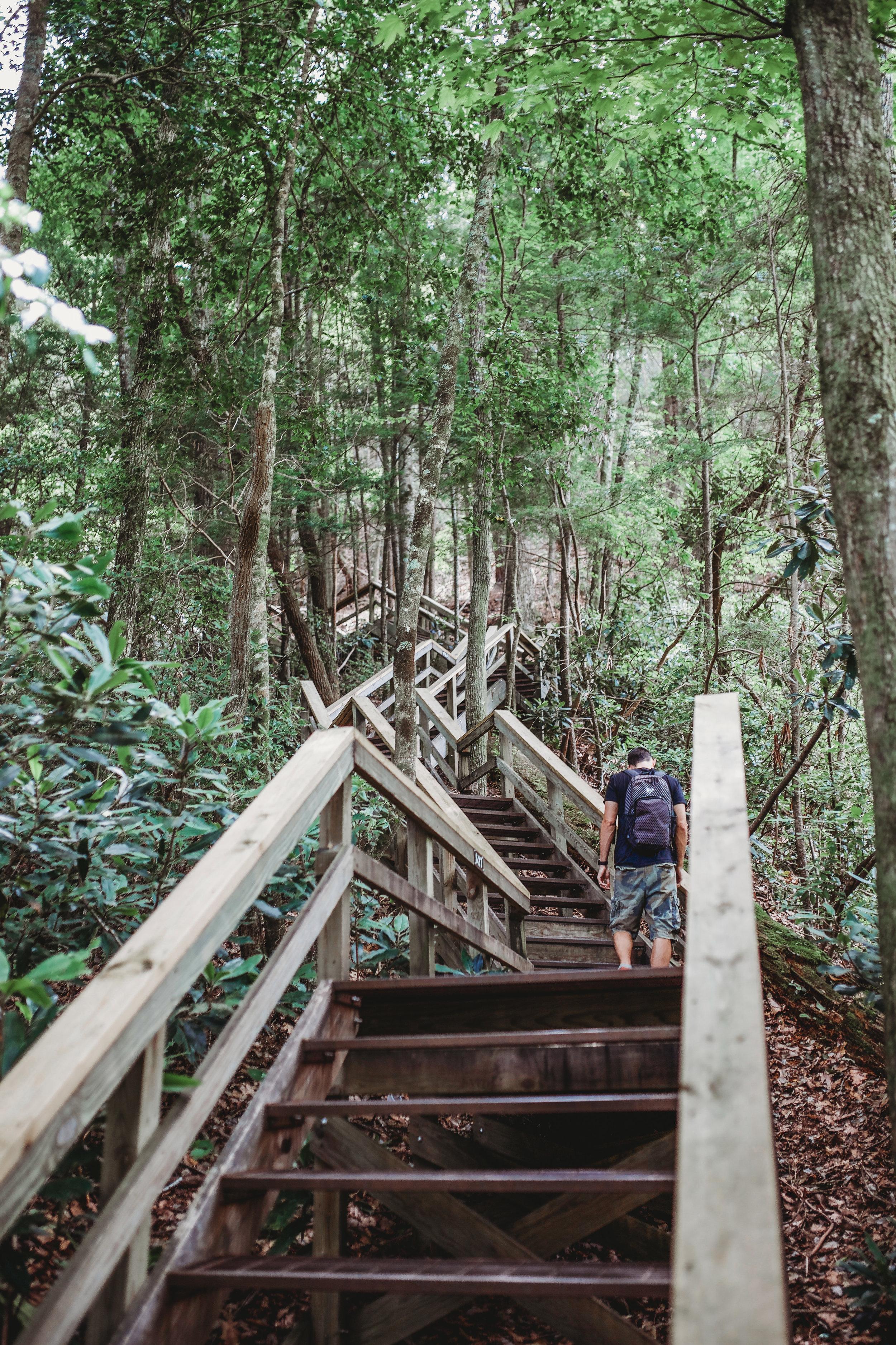 Sooo many stairs!
