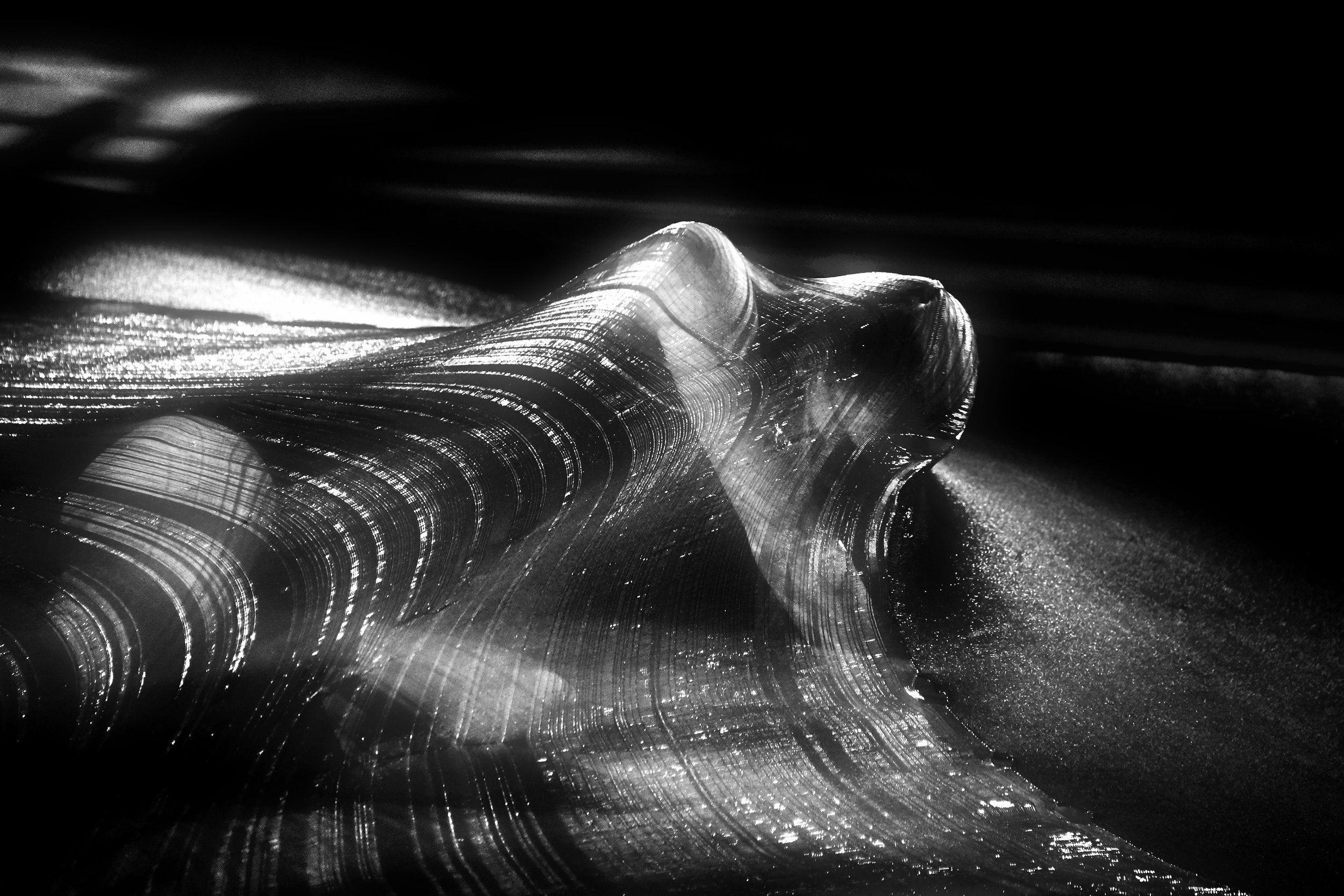_DSC0503 ReT CROP-DODGE- Tonality Monochrome DreamsSheet+LinCon-CROP12x8-IncSat-Con1-Lighter.jpg
