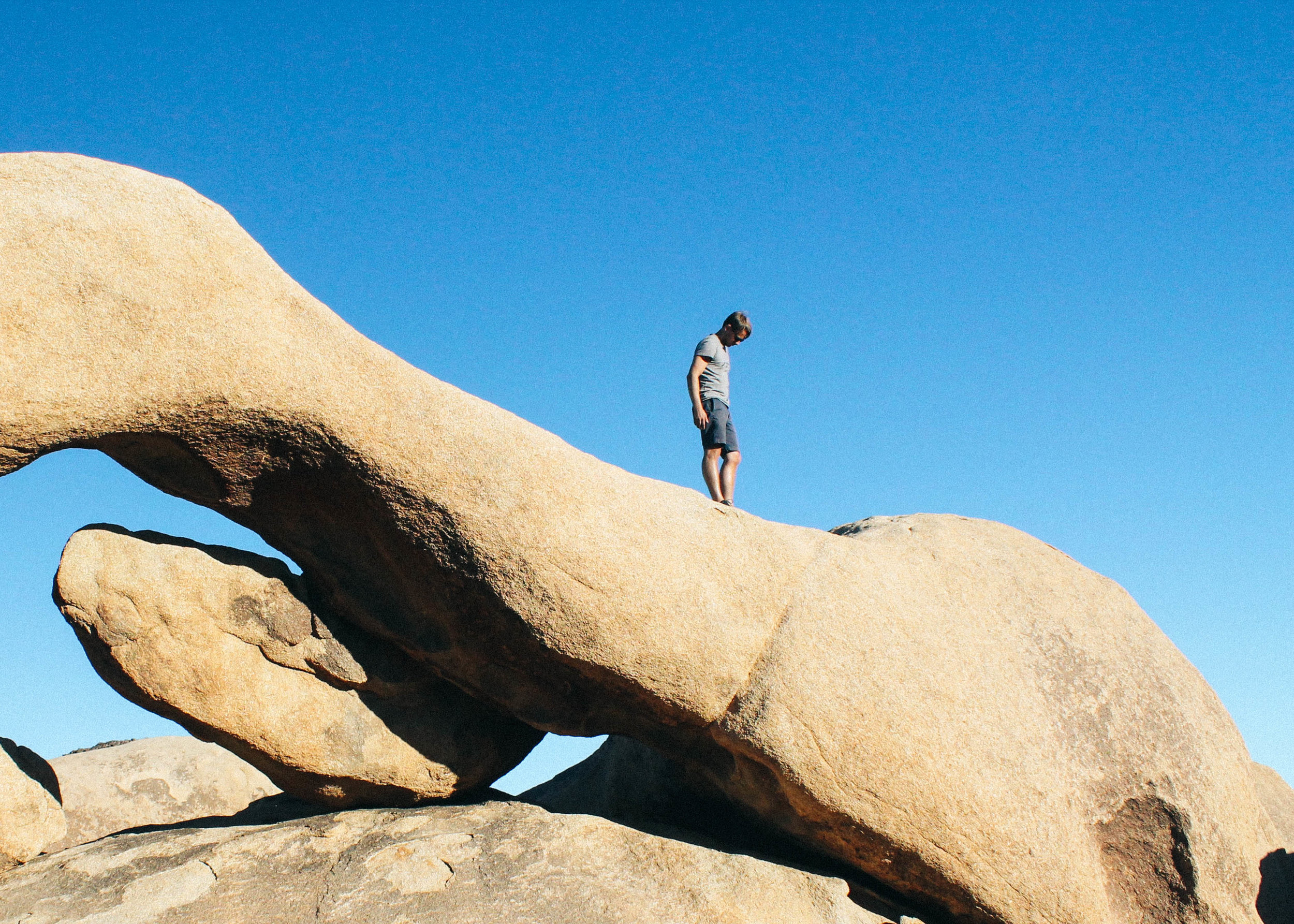 Famously intriguing rock gardens abound in Joshua Tree National Park