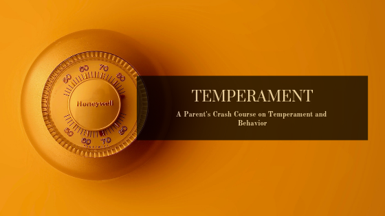 Understanding Temperament can be your key to big feelings and bewildering behaviors