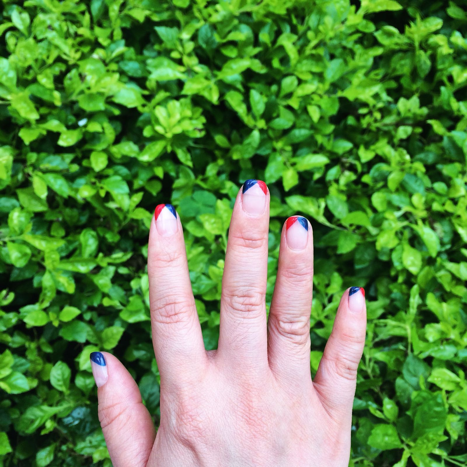 Red and blue triangle tips by Tracy
