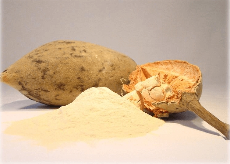 baobab-fruit-powder_2e64a918-9434-4306-8855-6d64bb640fbb.jpeg