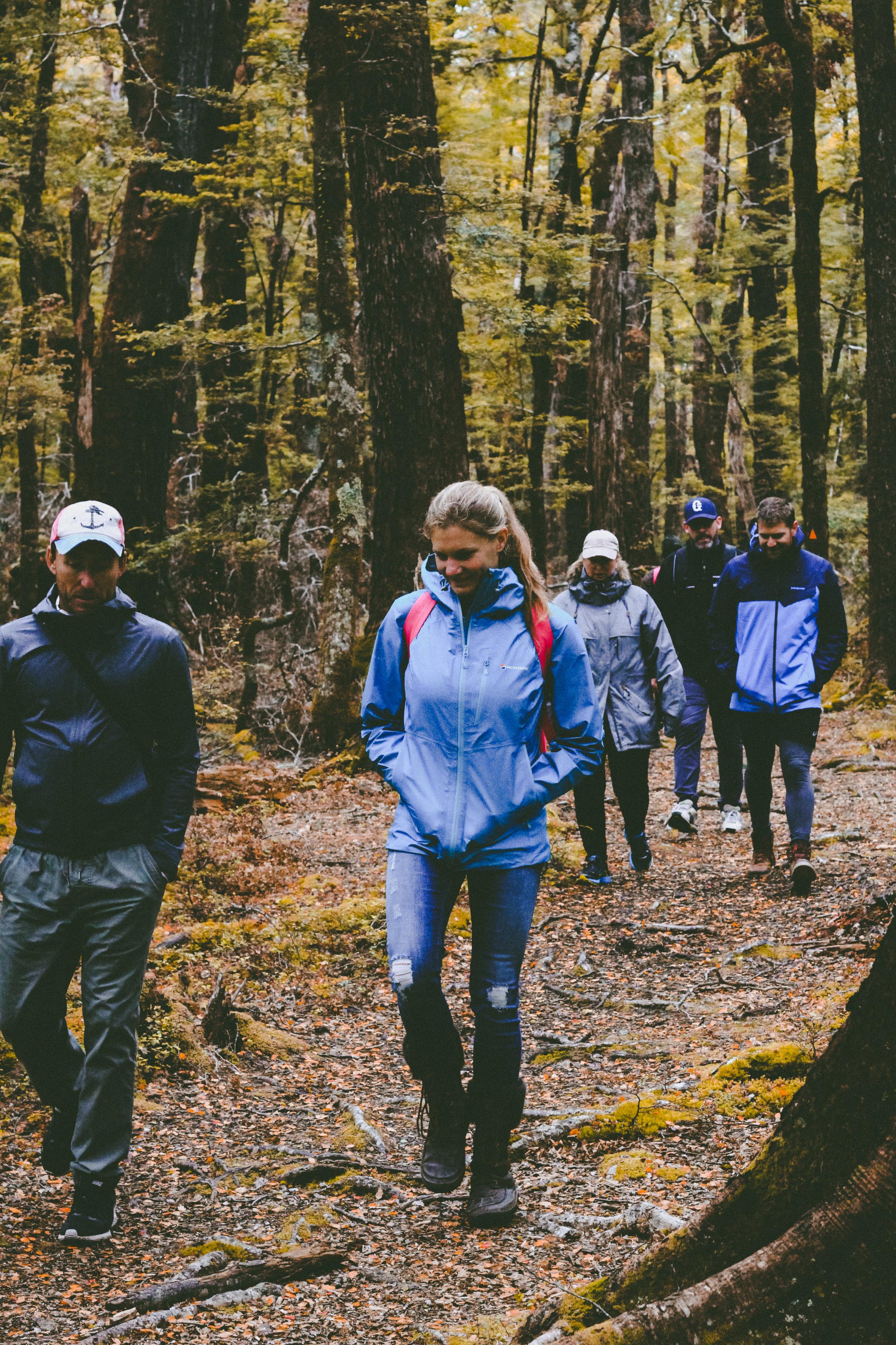 forest-walking