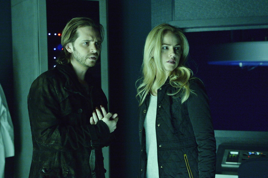 Time May Change Him: Aaron Stanford (Cole) and Amanda Schull (Cassie) in Netflix's  12 Monkeys