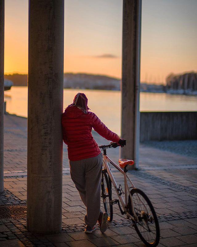 To cool for School 😎 www.knagit.com • • • • #baaw ##garmin #brooksengland  #lifebehindhandlebar #roadslikethese #roadtonowhere #knagit_magazine #landevei #sykkelglede #knag #duraace9100 #brooksengland #leica #stavangersentrum #stavangersk #knag #knagit #knagit_magazine #strava #stravacycling #poc #stravacycling #bikergirl #sunset #noctilux095