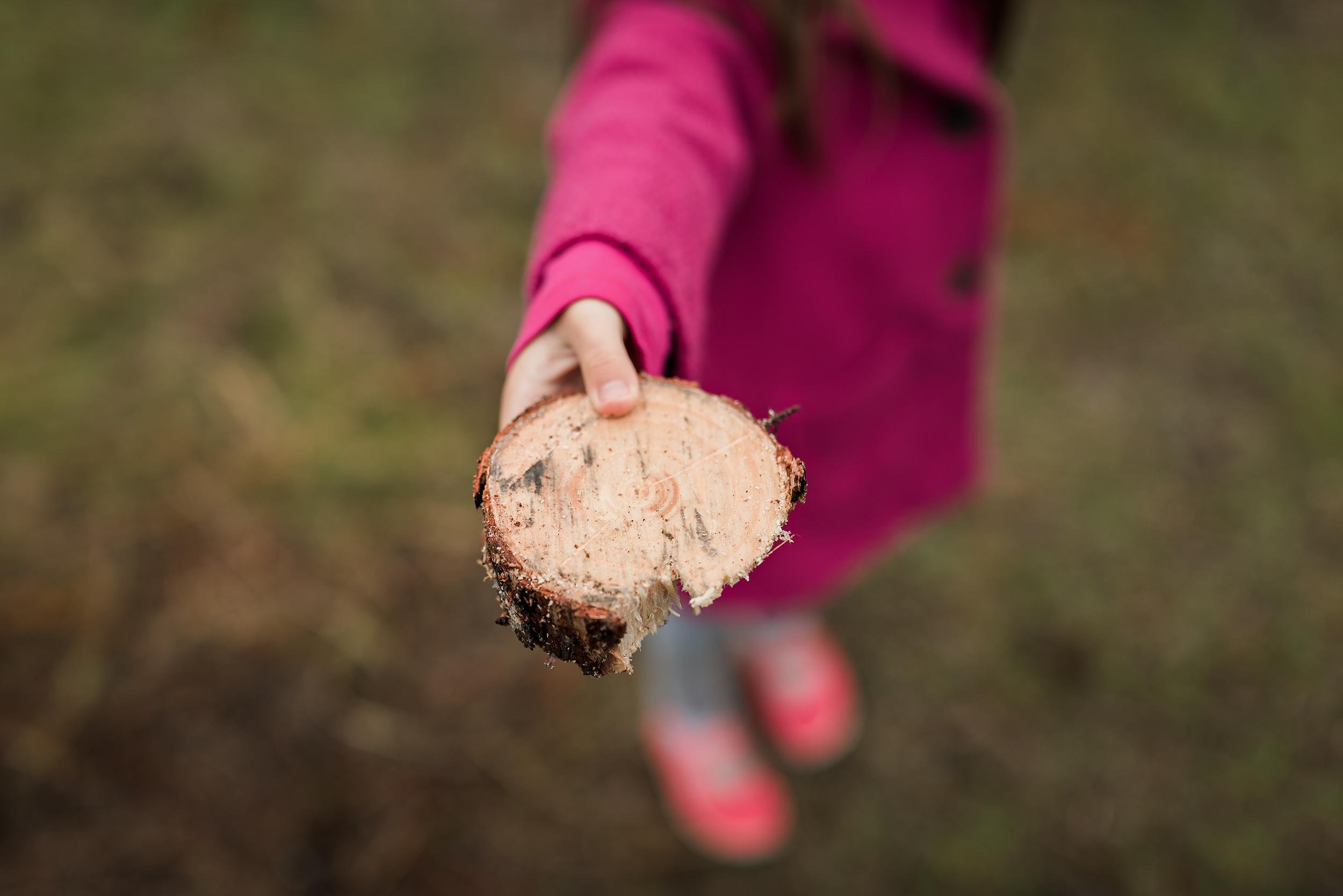 eden-holding-tree-cutting-virginia-pine-web.jpg
