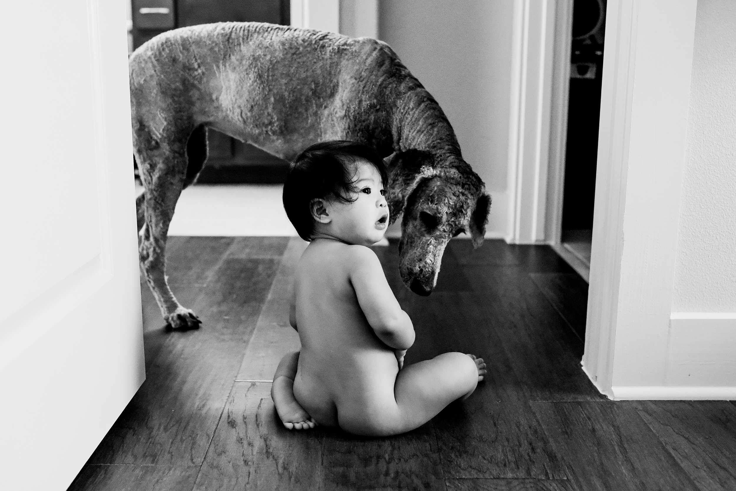 lifestyle family photography austin