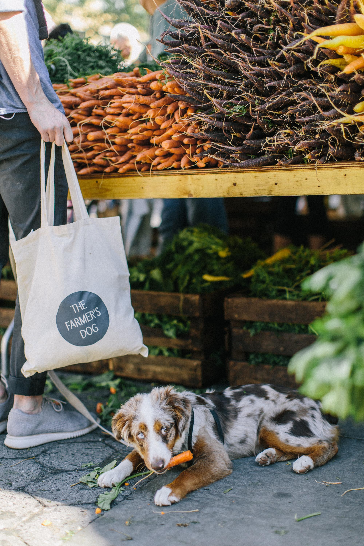 TFD_farmersmarketweek-80.jpg