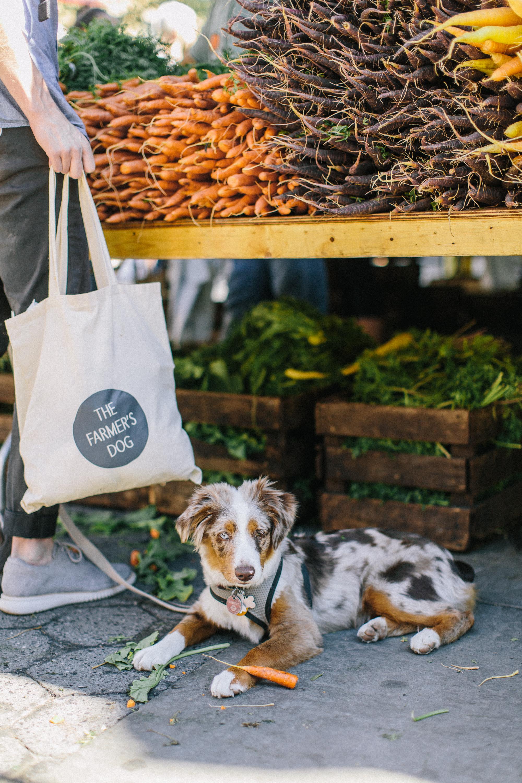 TFD_farmersmarketweek-85.jpg