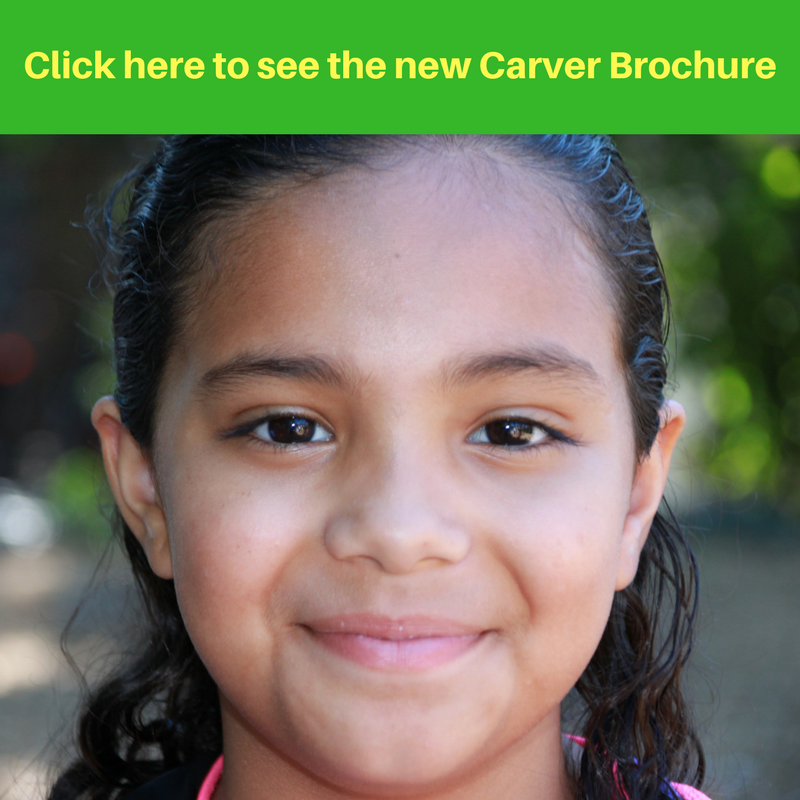 Click here to see the new Carver Brochure.png