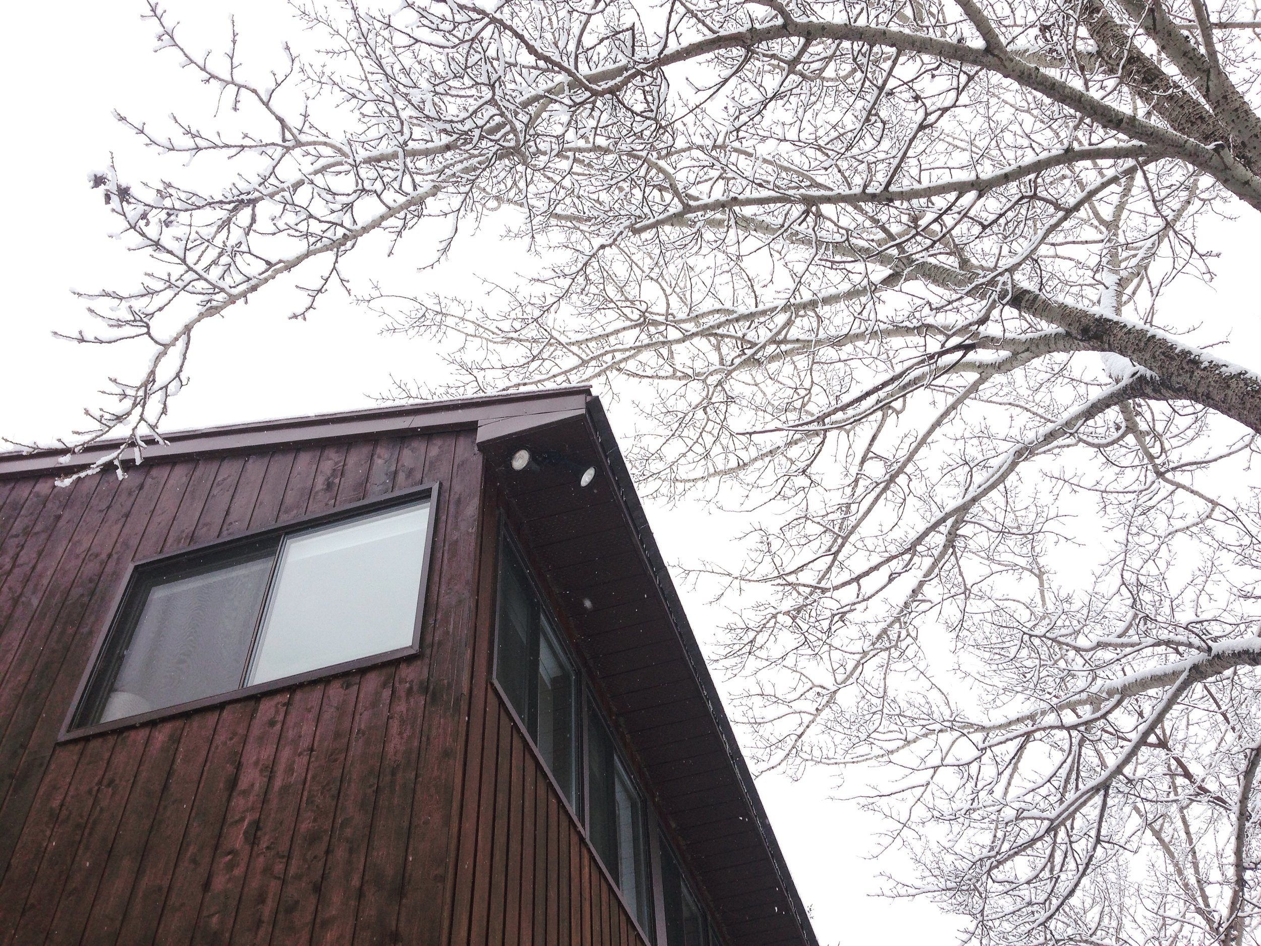 exterior corner winter.JPG