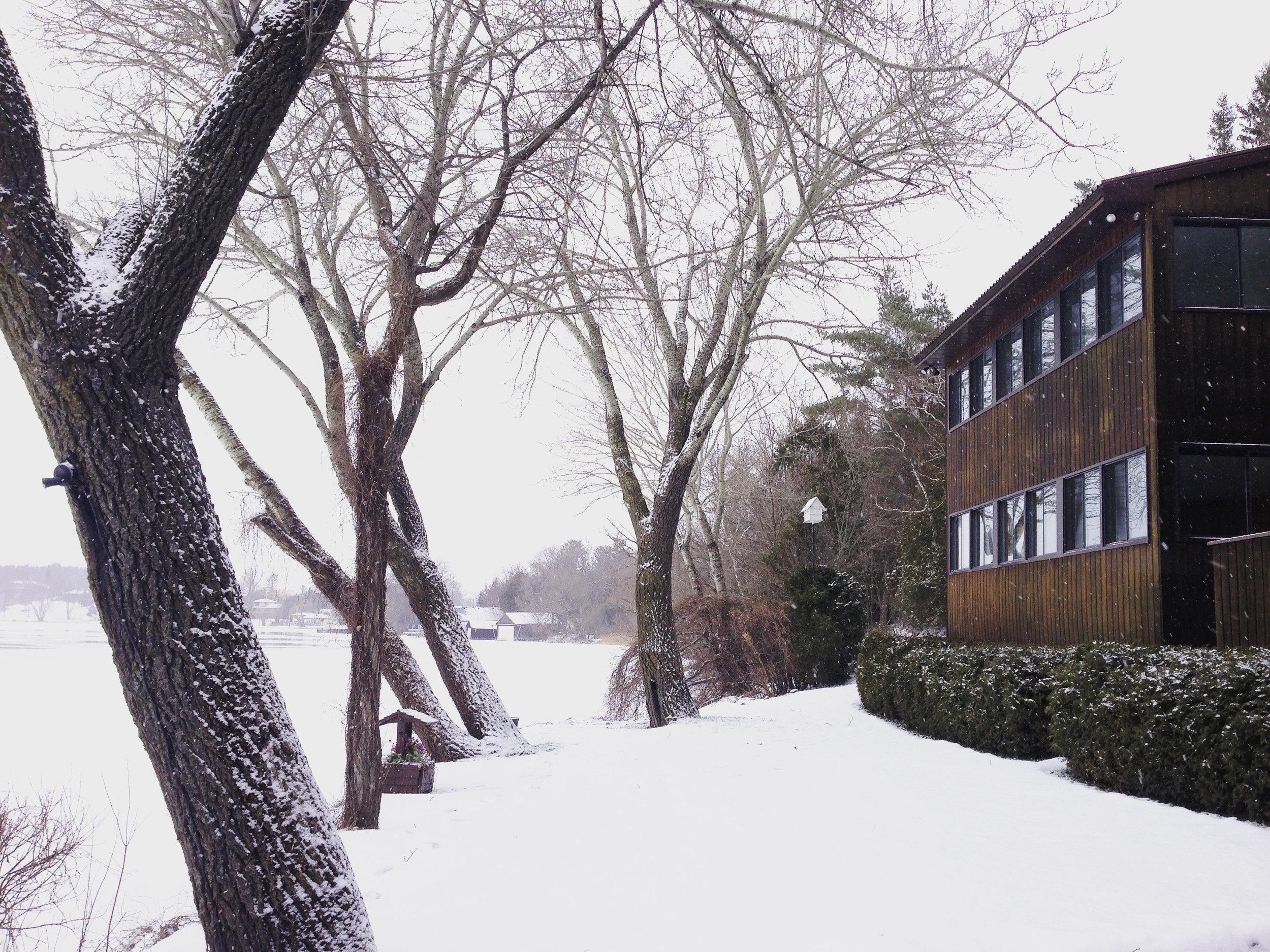 exterior winter 1.jpg