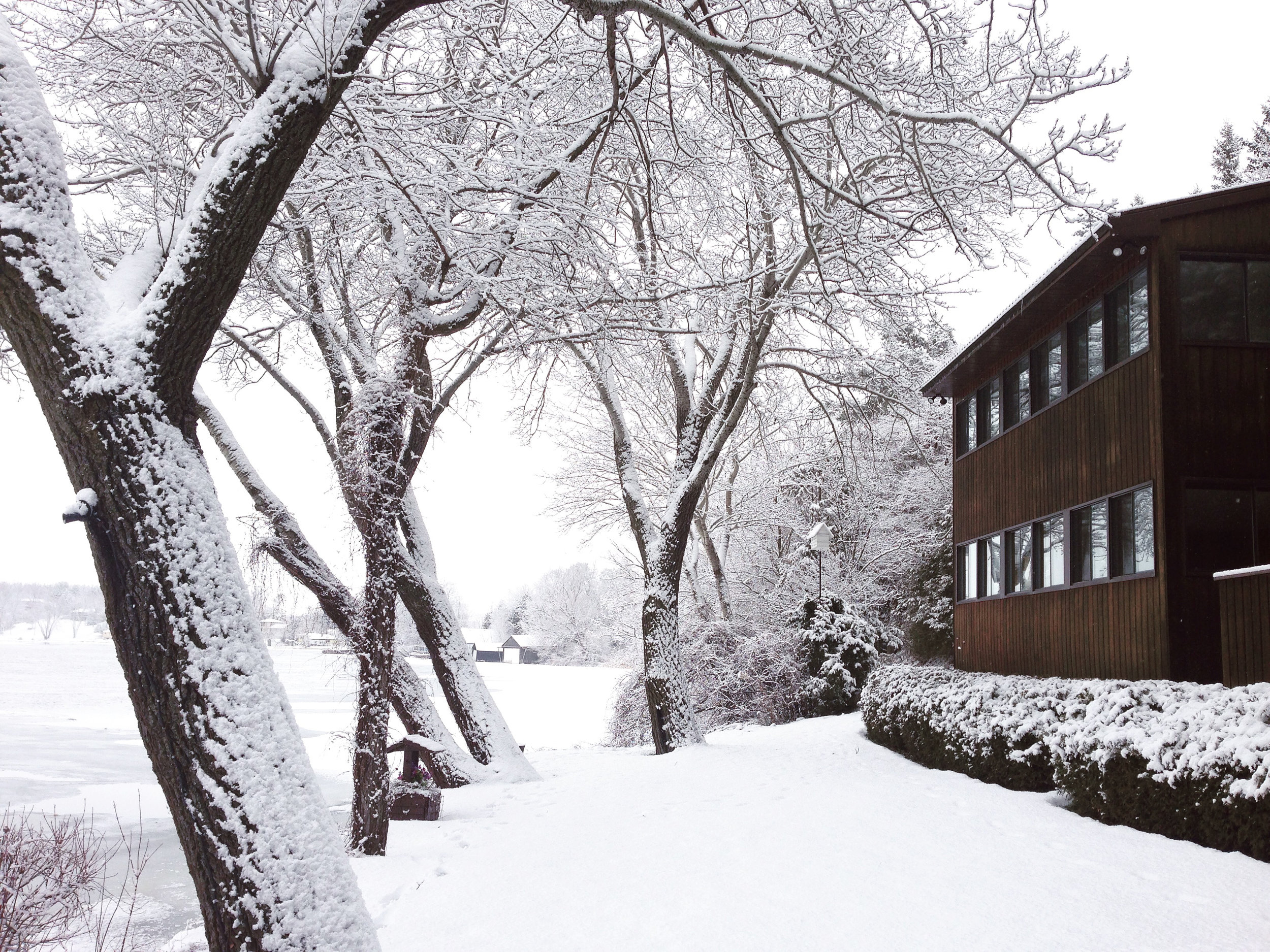 exterior winter 2 more snow.jpg