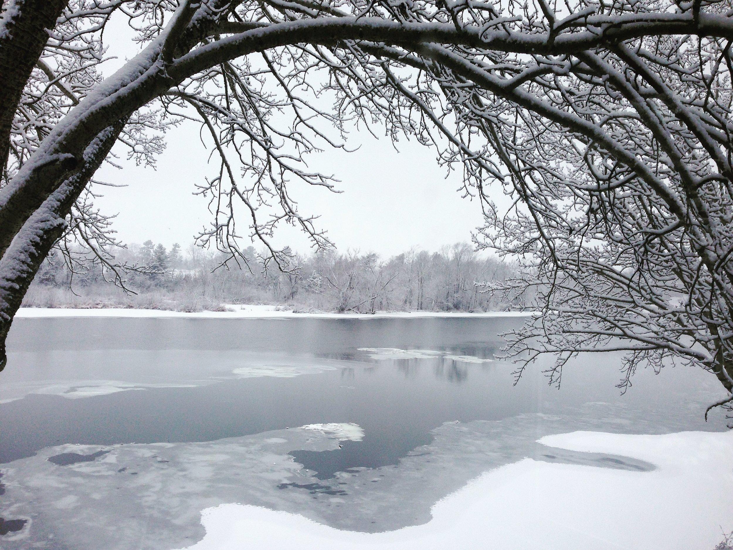 river winter 2.JPG