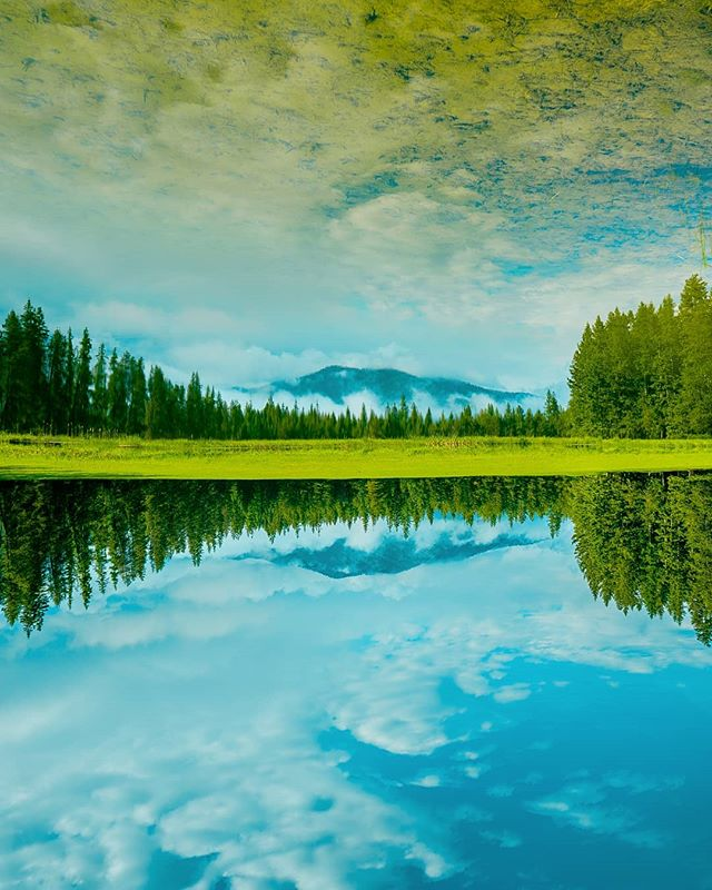🦌 Big Sky Country . . #DreamCreateProsper