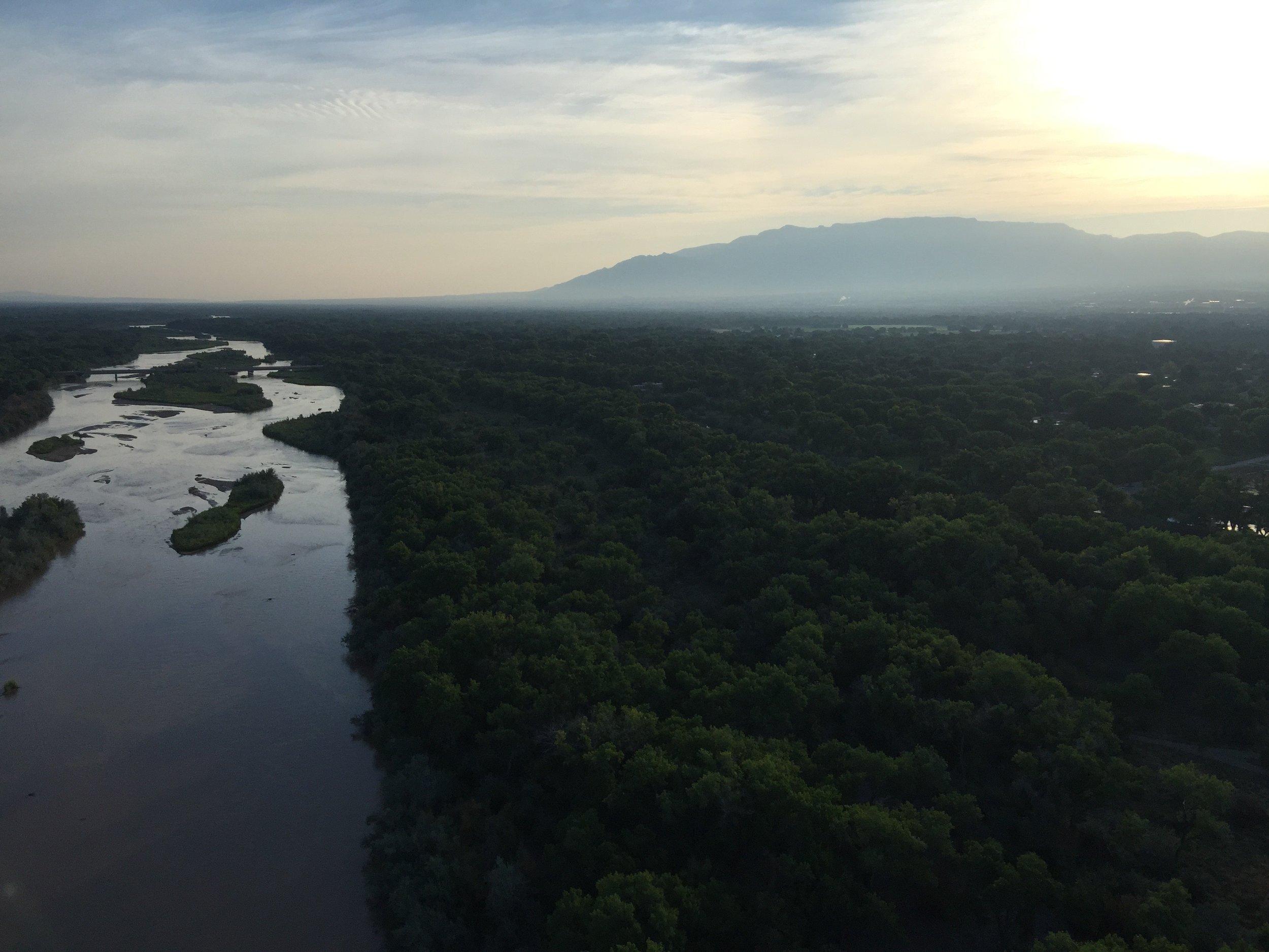 Rio Grande and the Bosque in the Spring