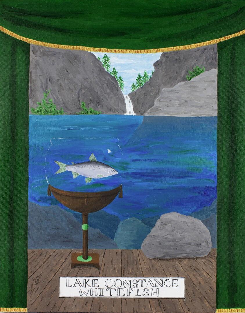 Extinct Animal #6: Lake Constance Whitefish