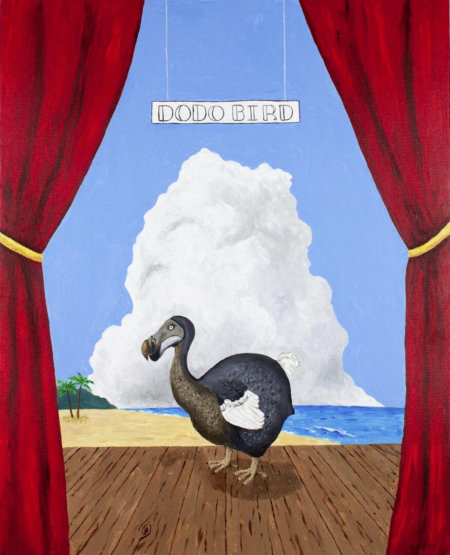 Extinct Animal #7: Dodo Bird