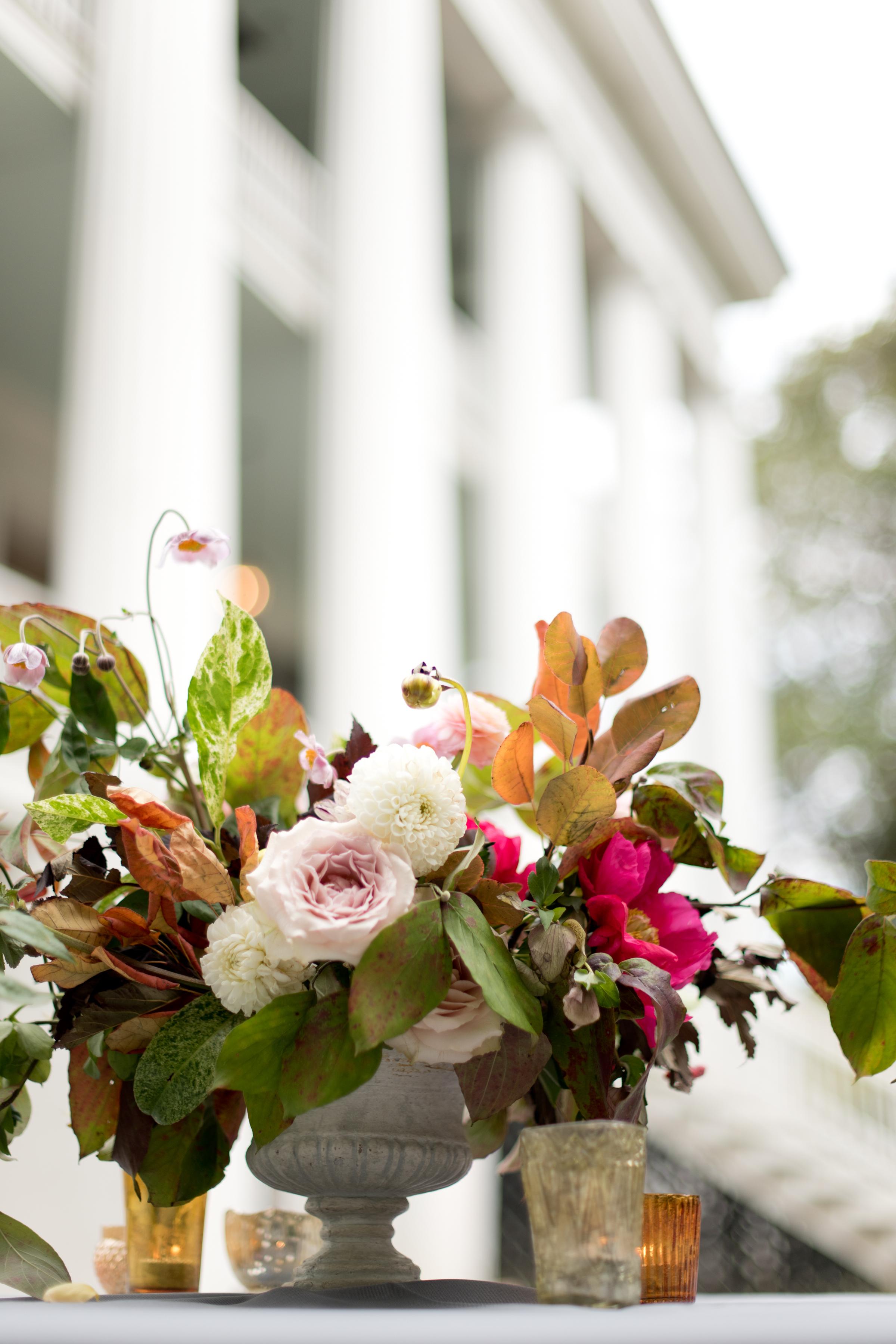 asheville_wedding_photographer078.jpg