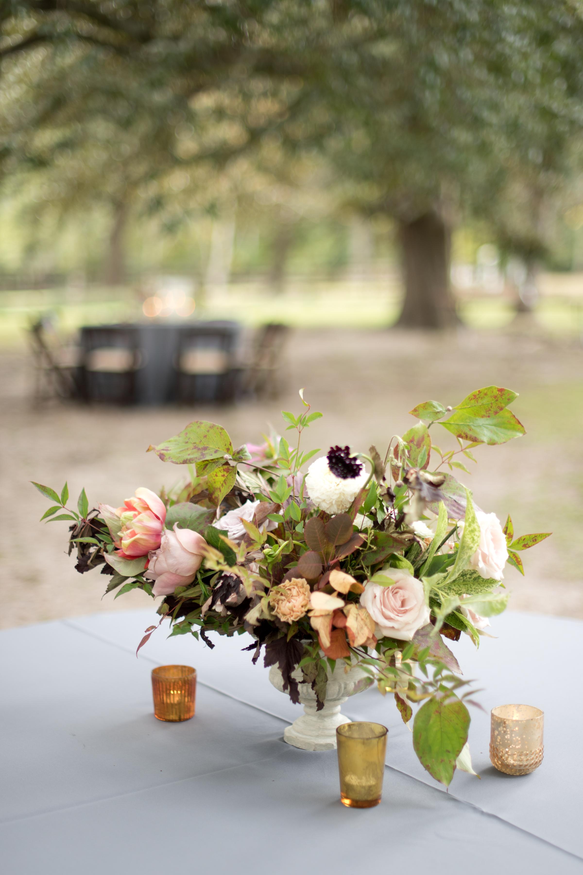 asheville_wedding_photographer80a.jpg