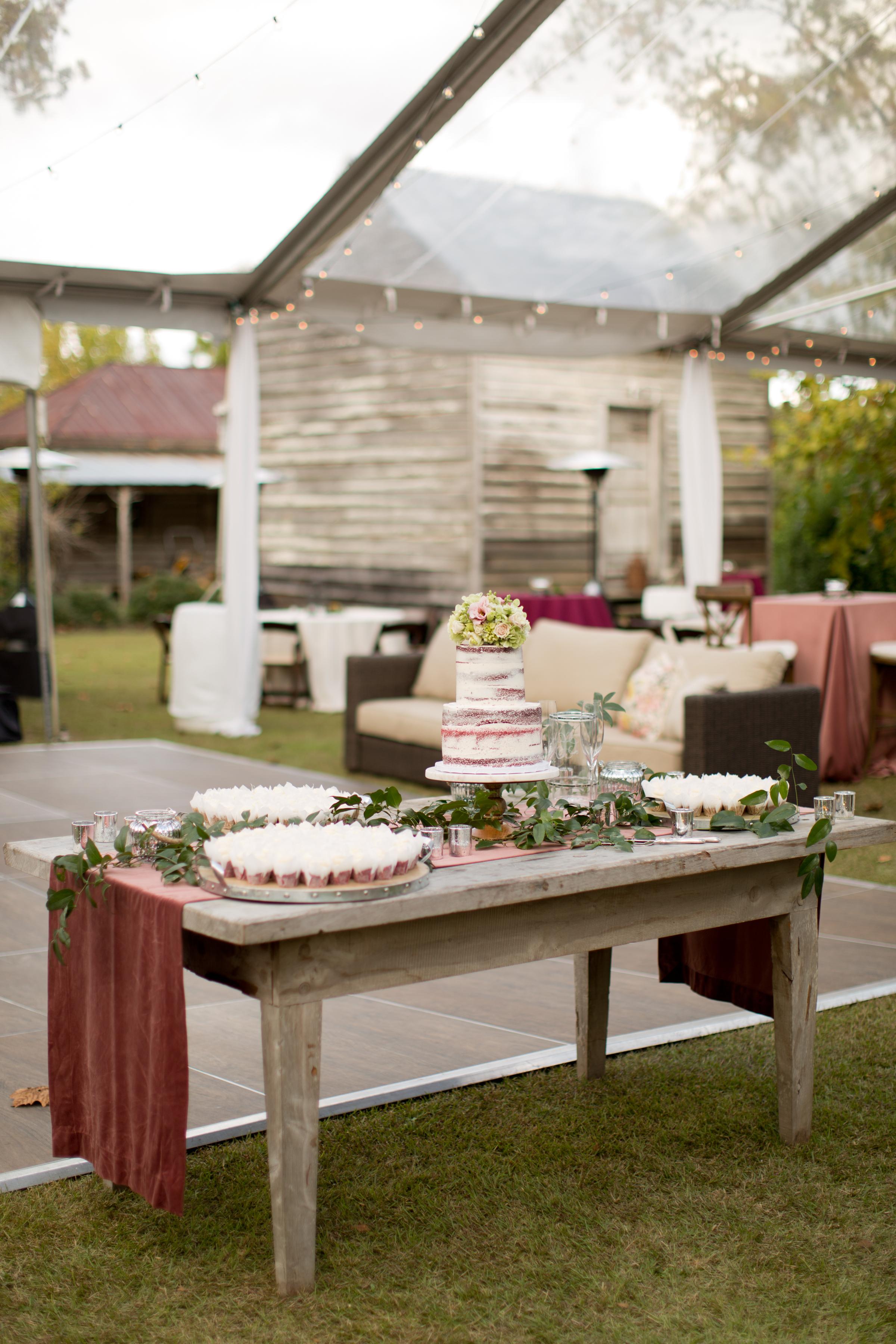 asheville_wedding_photographer572.jpg