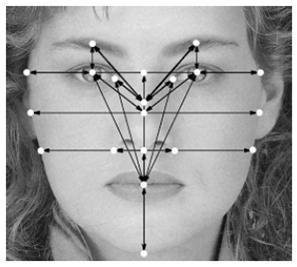 biometric3_Facial_Recognition-714753.jpg