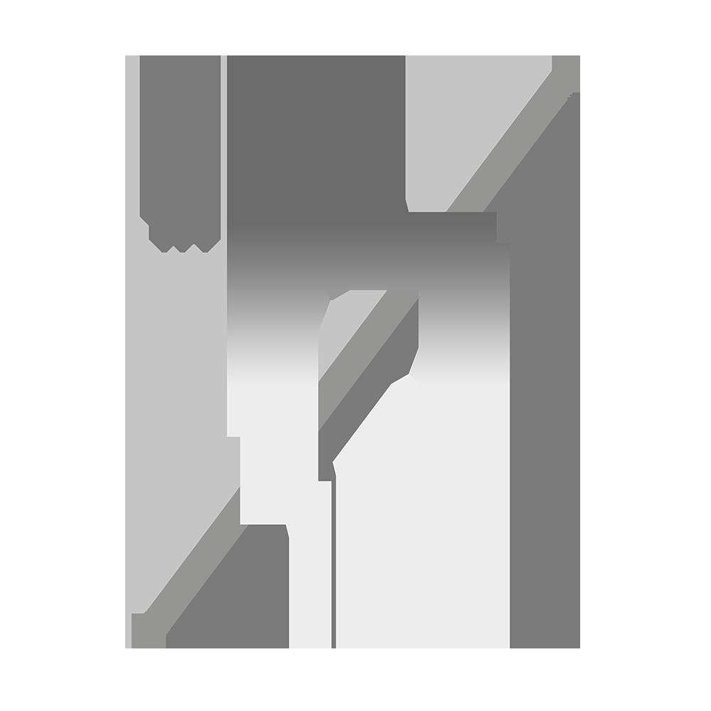 Pixelscopic_Logo_Grey.png