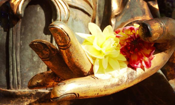 Meditation_Learn.jpg